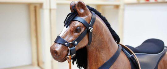 Detailní záběr na hlavu koníka Čenda 53